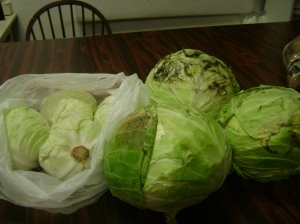 Moldy cabbage needs outer leaves peeled away